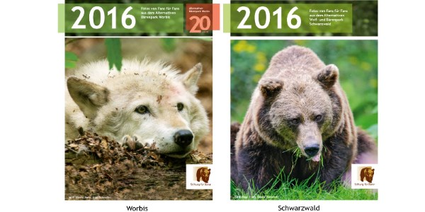 Die Bärenkalender 2016 sind da.