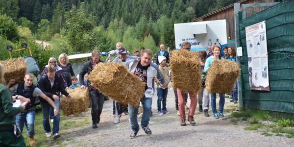 Action im Alternativen Wolf- und Bärenpark Schwarzwald