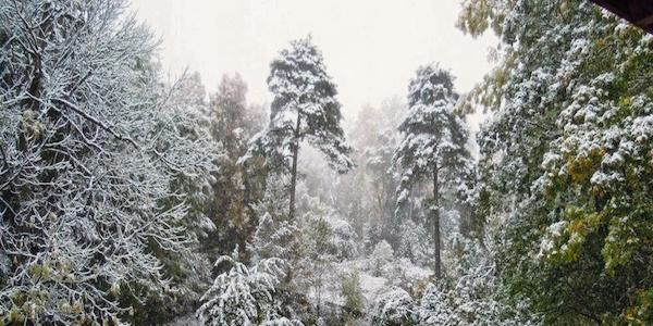 2017-11-23-Schnee-Worbis