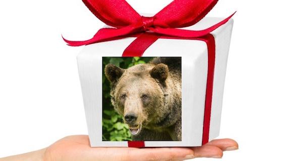 2017-11-23-Spende-statt Geschenk
